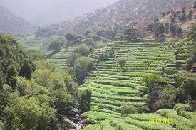The Korengal Valley